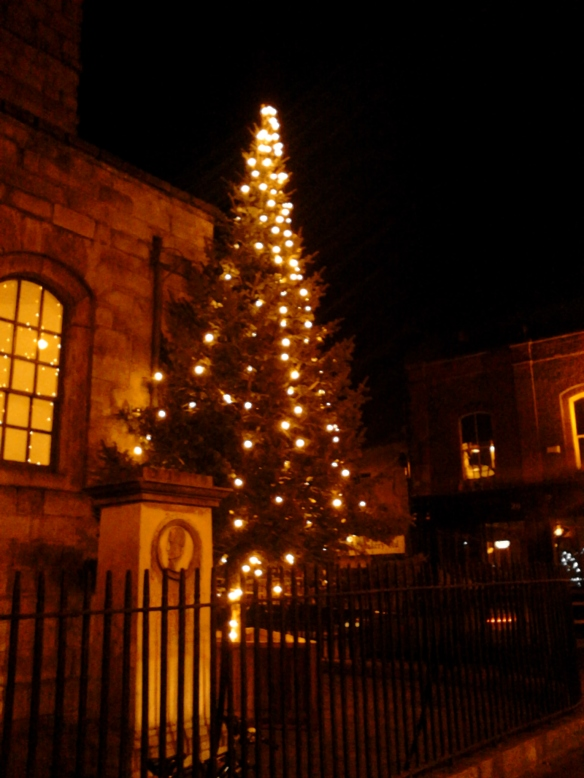 Christmas Trees of Dublin (1)